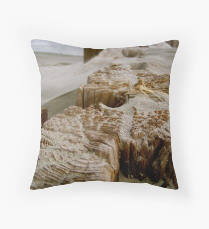 Folly Breakwater Throw Pillow