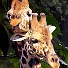 Giraffe's in Love - Painted Photograph by Dennis Stewart