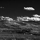 Wandering in Wyoming by Nate Welk