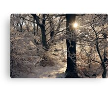 Golden Silvery Canvas Print