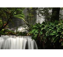Russell Falls.......Mount Field National Park Photographic Print