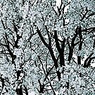 Tree Abstract by Jeannette Sheehy