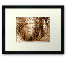 A Living Tunnel Framed Print