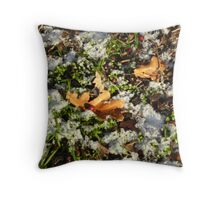 Winter Fairies Dishes Throw Pillow