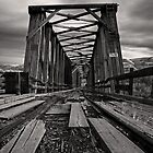 Troubled Bridge by Michael Collier