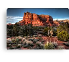 Cliffscape Canvas Print