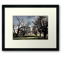The Receiving Line Framed Print