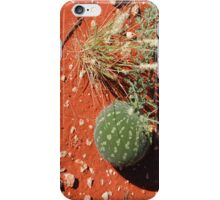 Bush tomato iPhone Case/Skin