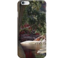 Waterhole iPhone Case/Skin