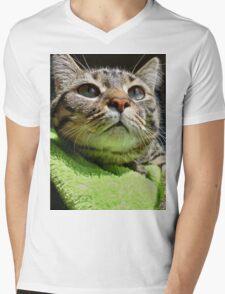 Favor Mens V-Neck T-Shirt