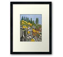 Tahoe Echo Falls Framed Print