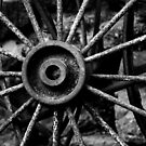 Cartwheel (Black and White) by shane22