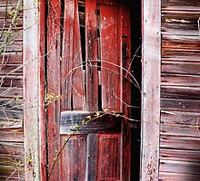 Red Door Warped Floor by Jack Hunt