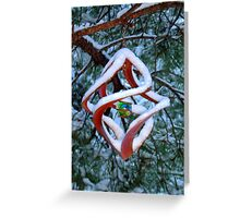 Snow & Globe Greeting Card