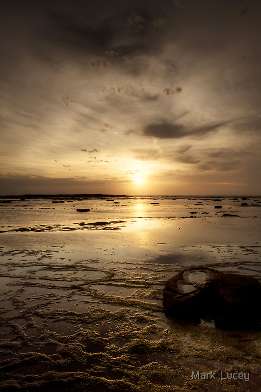 Sun on the Reef by Mark  Lucey
