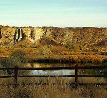 Hagerman Idaho....Snake River by trueblvr