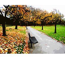 Fall park Photographic Print