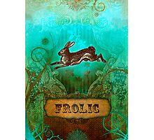 Frolic Photographic Print