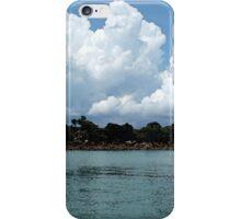 Darwin Build Up iPhone Case/Skin
