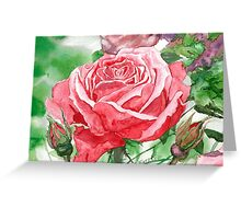Red Rose in Full Blossom Greeting Card