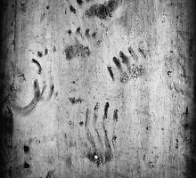 Bear Paw 'n Claw Art by DJ LeMay