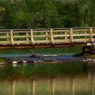 Lorette Bridge by Pam Hogg