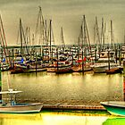 Morningstar Marinas/Golden Isles on the Frederico River at St Simons, Georgia by Chelei