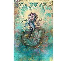 The Seahorse Diary Photographic Print