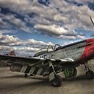 Mustang P-51D by njordphoto
