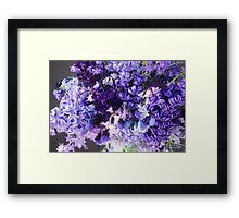 March Heirloom Blues #3 Bouquet Framed Print