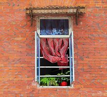 Double Happiness Window © by Ethna Gillespie