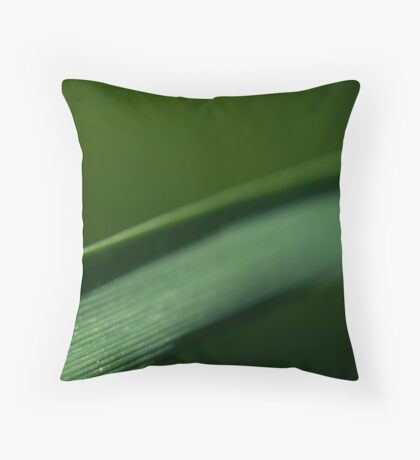 The World Entire Throw Pillow