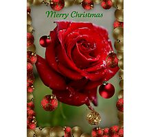 Merry Christmas 2011 Photographic Print