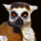 Ring-Tailed Lemur - Painting by Dennis Stewart