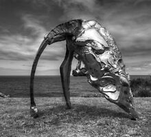 Cultivated Steel by Chris Allen