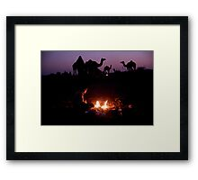 Camel Sunset Framed Print