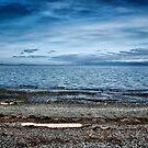 The Beach by Keri Harrish