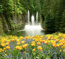 Butchart Gardens Fountain in Spring by AnnDixon