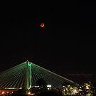Blood Moon by Susan Vinson