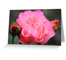 """""""A Rose By Any Other Name"""" Greeting Card"""