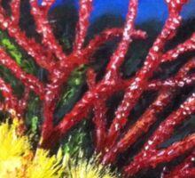 Corals Sticker