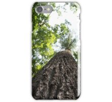 Large Tree In The Great Smoky Mountains iPhone Case/Skin