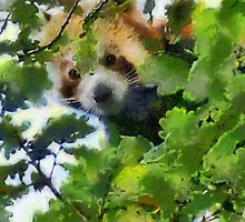 Red Panda by buttonpresser
