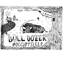 Occupy Sleep editorial cartoon Photographic Print