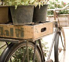 the gardening bike.  by Deanne Dwight