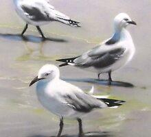 Seagulls Trio by Victorino  Bautista