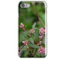 Tiny Pink Buds iPhone Case/Skin