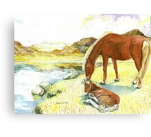 Horse and Colt on a Lazy Summer Afternoon Canvas Print