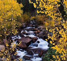 The River Of Gold by John  De Bord Photography