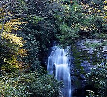 i Meigs Fall III by Gary L   Suddath